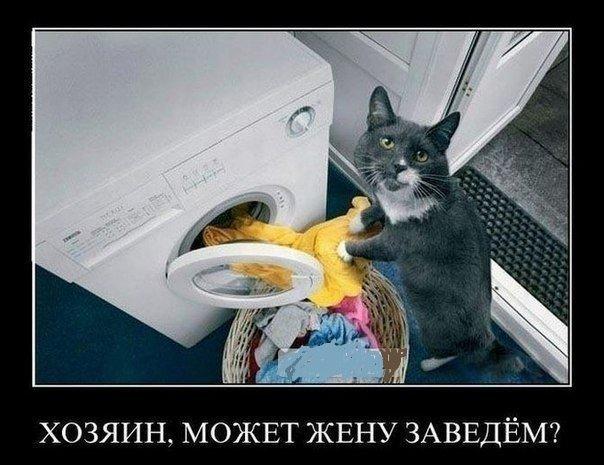 http://cs14107.vk.me/c616019/v616019447/49c8/fZ9Nfn4doPI.jpg