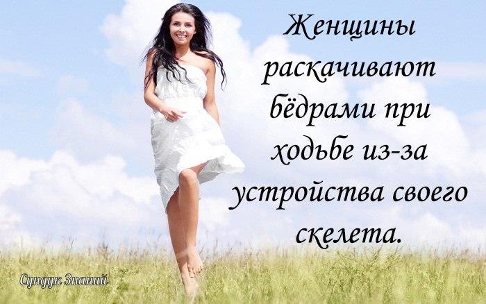 https://cs541601.userapi.com/c540100/v540100780/4e0ef/1hsZqg9he5w.jpg