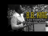 BB King  Live At The 1976 Ohio Valley Jazz Festival