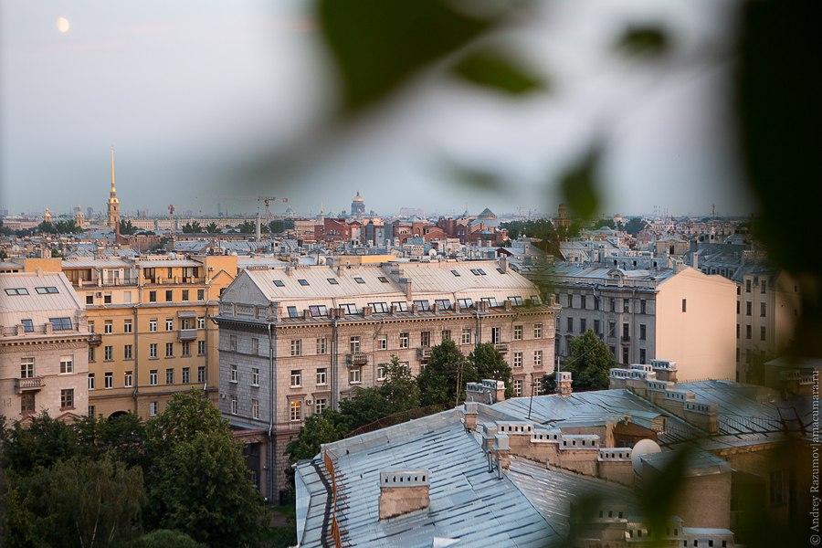 крыши Петербург