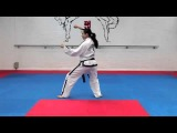 Dan Gun Tul and basic movements for grading to 7th kup