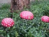 Самое простое украшение для дачи, сада - поделка гриб.