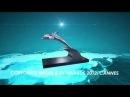 Russian Travel Guide RTG TV - Награды RTG TV HD 1080p