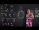 Строение бактериальной клетки. Микробиология 6