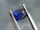 1.275ct Royal to Navy Blue Sapphire from Sri Lanka not heated