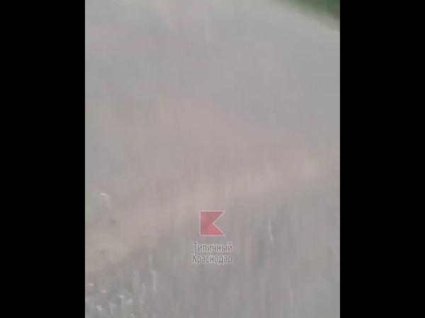 Задержание перевозчиков «спайса» на трассе между Афипским и Северской сегодня днем.