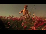 Leo Running Through a Field of Poppies