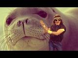 Тюмень - не тюлень!   [Время Развлечений]