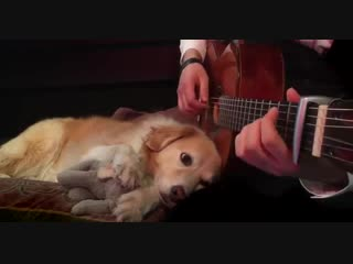 Green Day - Boulevard of Broken Dreams Fingerstyle