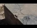 Запретные темы истории - 07 Восточная коллекция Часть 3 Персидский эталон ( forbidden2017 )