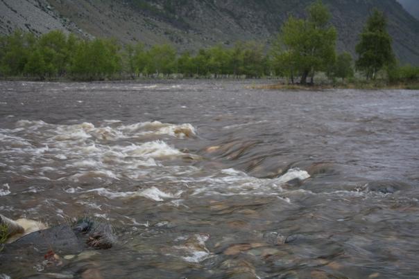 Река сразу наполнилась таявшей водой.