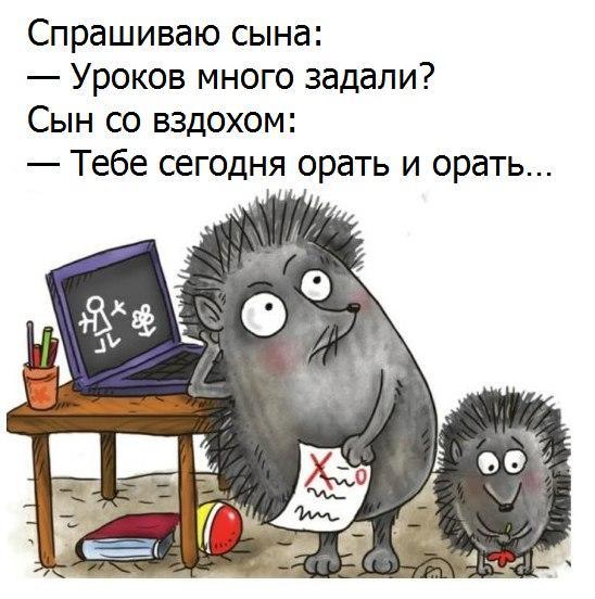 https://cs7057.vk.me/c543106/v543106123/24edb/P8UBUoPtMJw.jpg