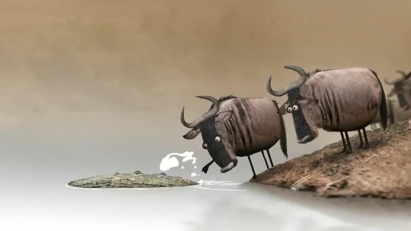 Wildebeest от Bird Box Studio