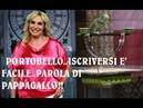 PORTOBELLO ISCRIZIONI:Antonella Clerici, concorrenti Portobello: come fare per partecipare