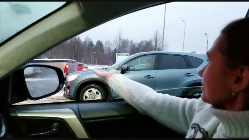 Ручные синички в Финляндии