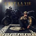 massiv альбом C'est la vie