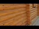 Покраска деревянного сруба бани из бревна маслом Biofa