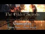 Elder Scrolls Online - Dragon Knight Gameplay (Ardent Flame)