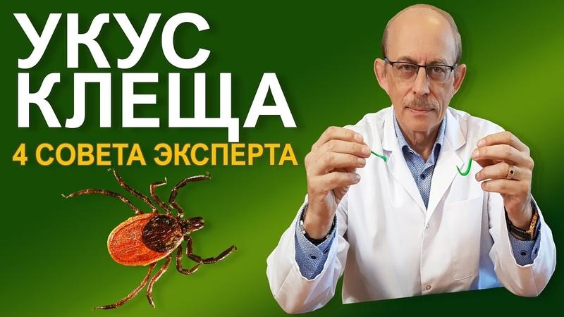 Что делать если Вас укусил клещ - последние Европейские рекомендации CDC и IDSA