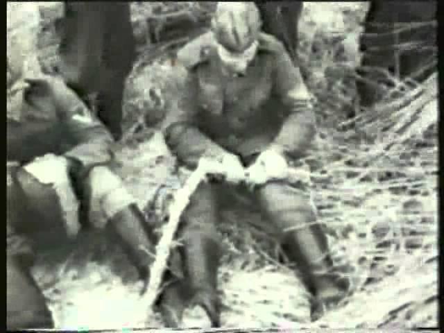 Хроники, снятые немцами в Севастополе