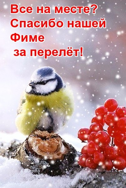 https://pp.userapi.com/c846017/v846017047/1ad3fc/m-qykjR7Lco.jpg