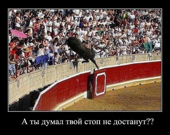 Банковский forex