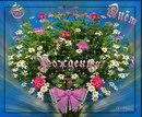 http://cs419525.vk.me/v419525936/2e93/ajDH4sVoaIU.jpg