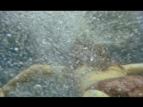 Anthropophagus - drowning