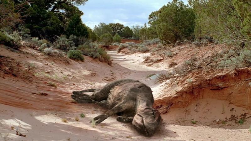 BBC Прогулки с Динозаврами Баллада о Большом Але - Съемка Фильма - (BBC Walking with Dinosaurs -The Ballad of Big Al)(2000)