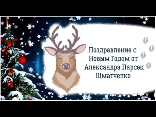 Поздравляю с новым годом Саша Парсек Шматченко