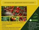 Perfect Garden minerals. Новое удобрение 3 в 1. Состав удобрения.
