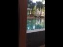 The Fischerman's Harbor Urban Resort SPA