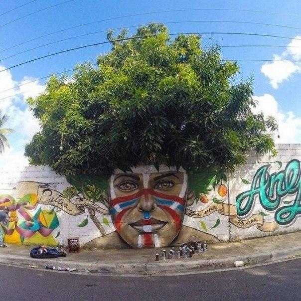 Деревья, которые мечтали стать картинами