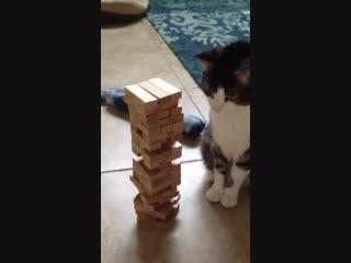 Он тоже хочет играть