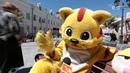 Интервью с жёлтым котом Олегом