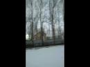 Поля Топская - Live