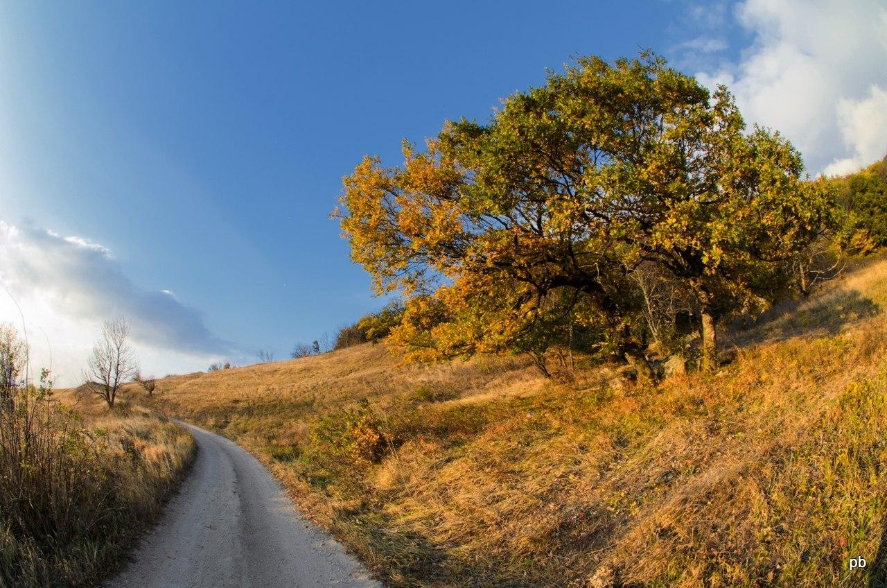 Кольцевая дорога Бештау на западном склоне