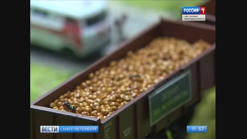 Репортаж канала Россия-1 из Тропического Комплекса Миндо