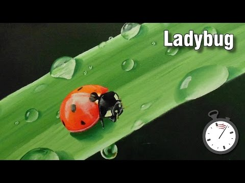 Still life painting tutorial - How to paint insects - ladybug time lapse in oil