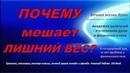 ПОЧЕМУ мешает ЛИШНИЙ ВЕС Николай Пейчев Академия Целителей
