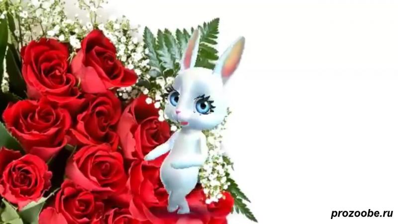 Поздравление с днем рождения девушке женщине - Поздравления от Зайки Домашней Хо