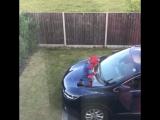 Когда у тебя завёлся Человек-паук. Видео приколы