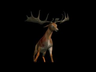 Анимация 3д модели оленя на прозрачном фоне фрагмент хф Крейк 2007г