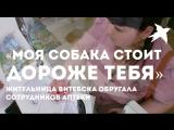 Витебск: посетительница обругала провизоров, потому что ее не хотели обслуживать из-за собаки