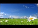 Медитация Утренний настрой для женщин на любовь и счастье