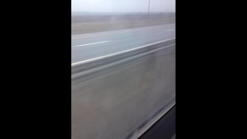 Рустам Гаджибагомедов — Live