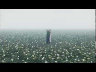 riccardo fogli--storie di tutti i giorni (dj nikolay-d remix 2013)