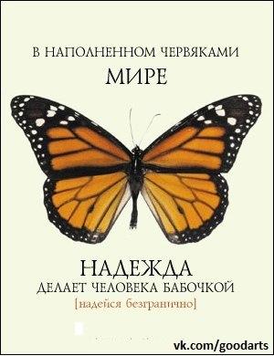 http://cs407622.userapi.com/v407622500/18b/tEm9iKVbfSk.jpg