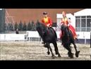 Выступление лошадей фризской породы - кадриль отредактированное видео