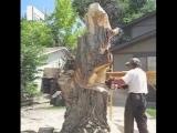 Мастер резьбы бензопилой по дереву, 80 lvl